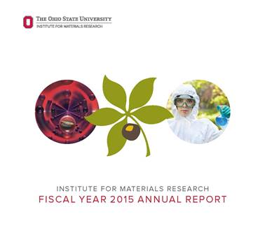 IMR FY15 report cover web small